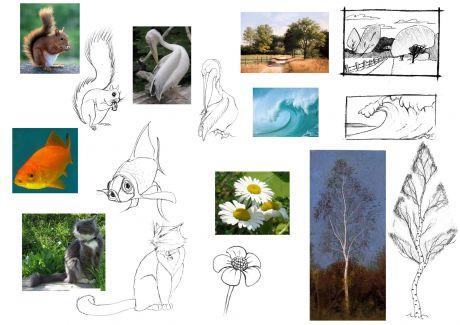 Caricature faune et flore